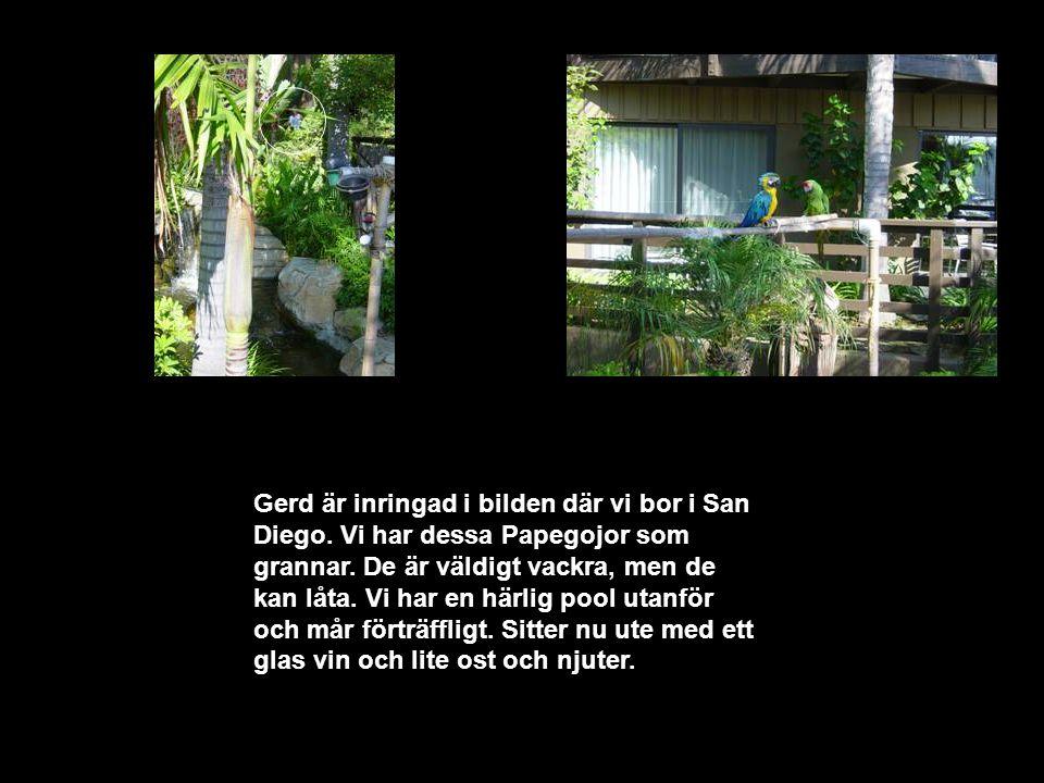 Text Box Gerd är inringad i bilden där vi bor i San Diego.