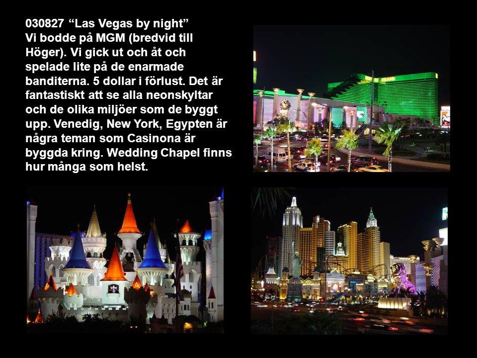 030827 Las Vegas by night Vi bodde på MGM (bredvid till Höger).