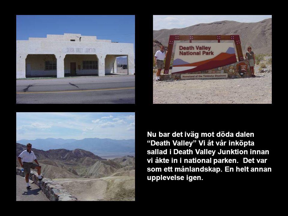 Nu bar det iväg mot döda dalen Death Valley Vi åt vår inköpta sallad i Death Valley Junktion innan vi åkte in i national parken.