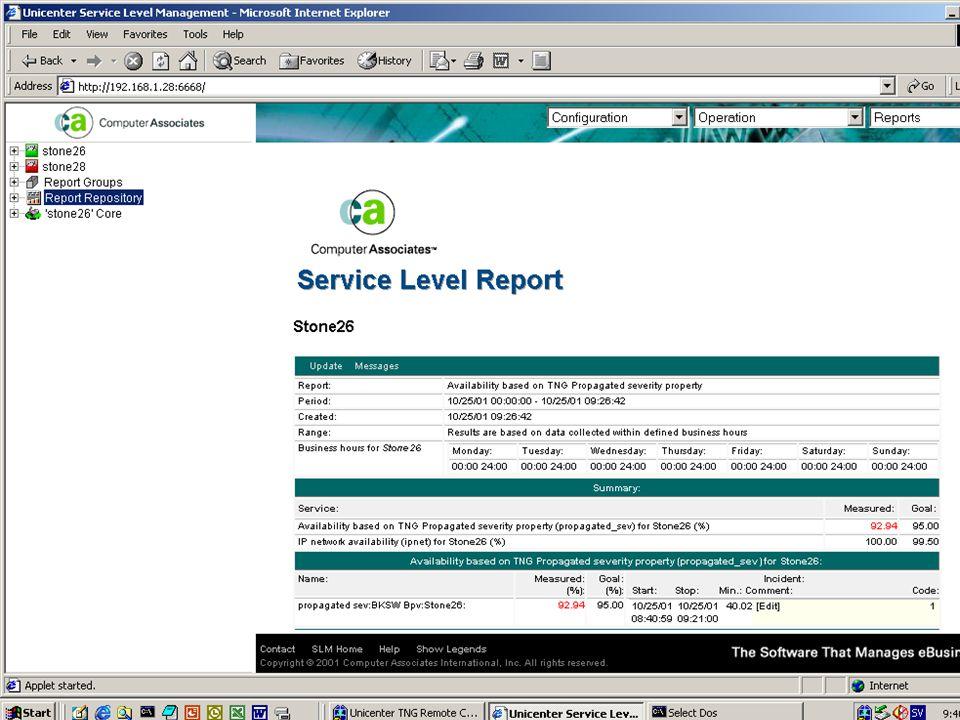 USLM Service Level Report.