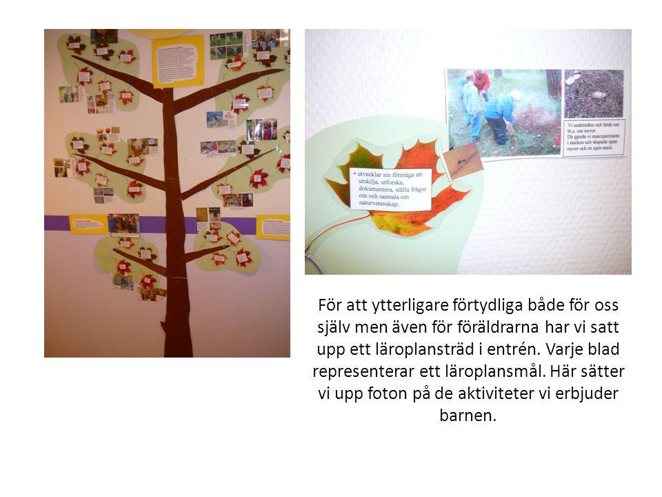 För att ytterligare förtydliga både för oss själv men även för föräldrarna har vi satt upp ett läroplansträd i entrén. Varje blad representerar ett lä
