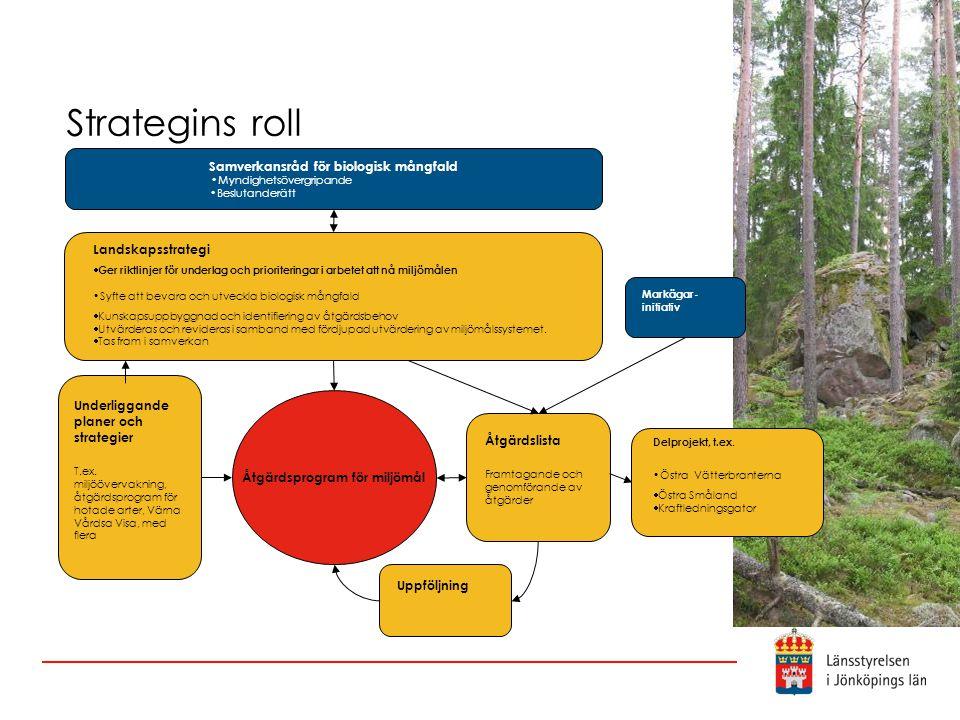 Strategins roll Landskapsstrategi  Ger riktlinjer för underlag och prioriteringar i arbetet att nå miljömålen •Syfte att bevara och utveckla biologisk mångfald  Kunskapsuppbyggnad och identifiering av åtgärdsbehov  Utvärderas och revideras i samband med fördjupad utvärdering av miljömålssystemet.
