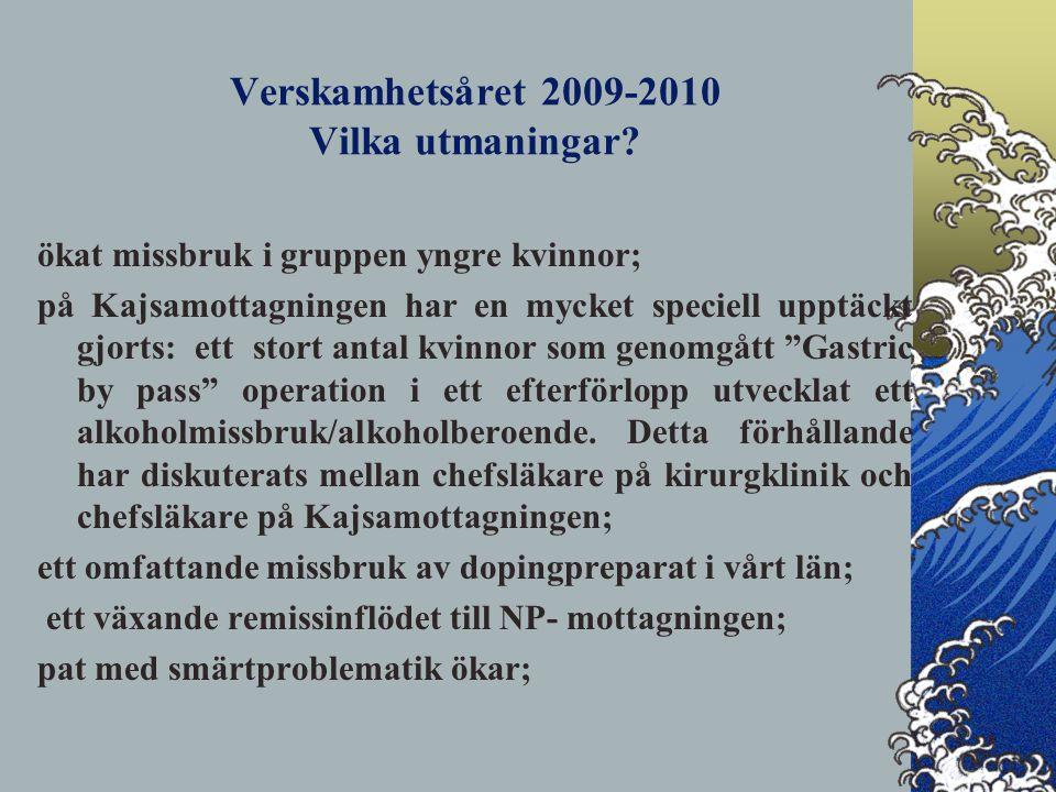 Verskamhetsåret 2009-2010 Vilka utmaningar.