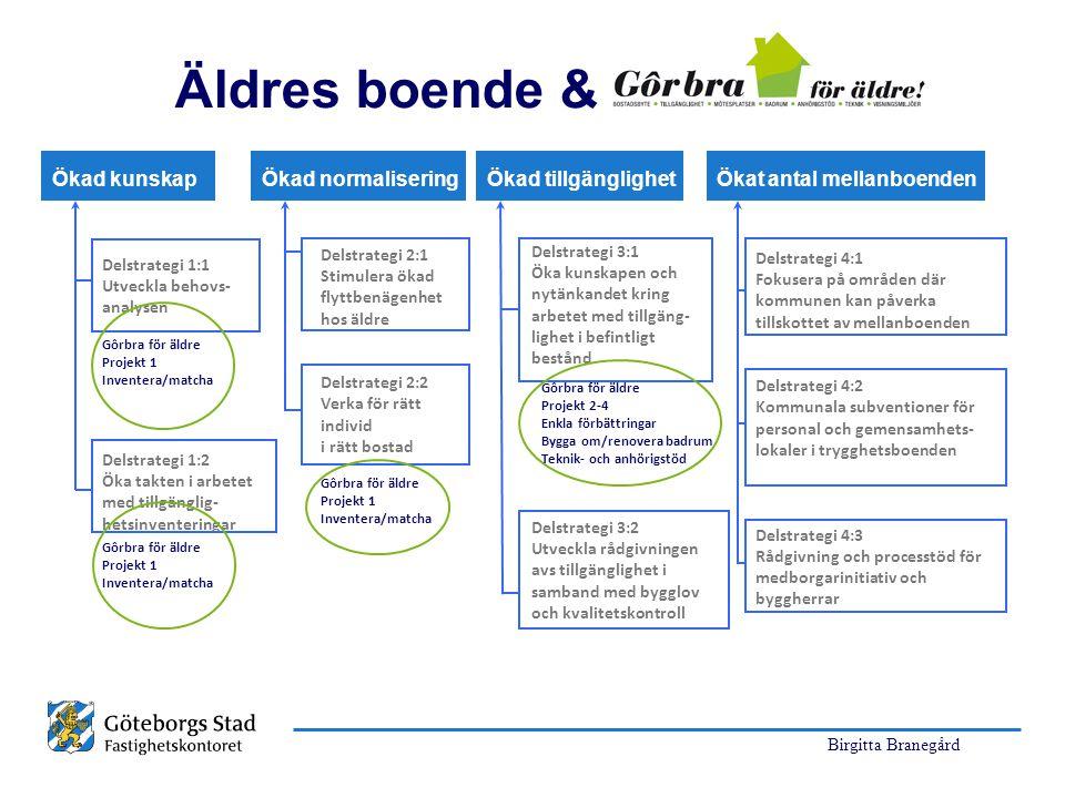 Birgitta Branegård Delstrategi 1:1 Utveckla behovs- analysen Gôrbra för äldre Projekt 1 Inventera/matcha Delstrategi 1:2 Öka takten i arbetet med till