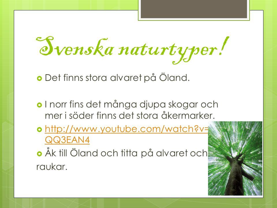 Svenska naturtyper. Det finns stora alvaret på Öland.