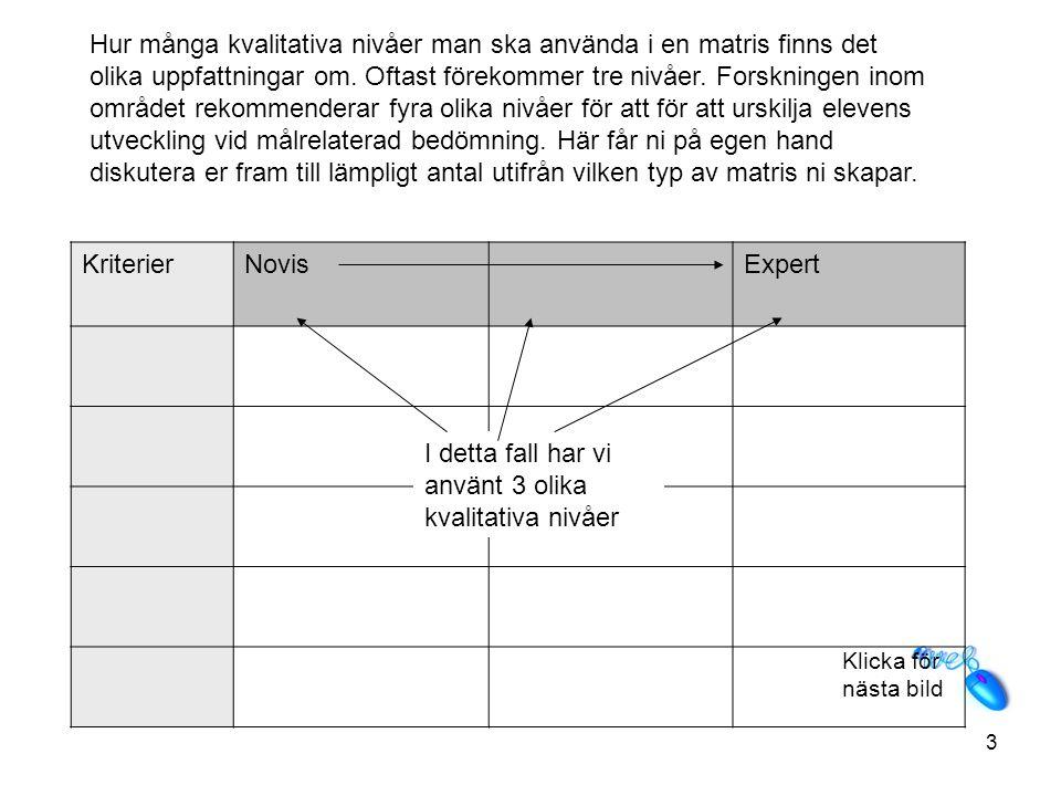 3 KriterierNovisExpert Hur många kvalitativa nivåer man ska använda i en matris finns det olika uppfattningar om.