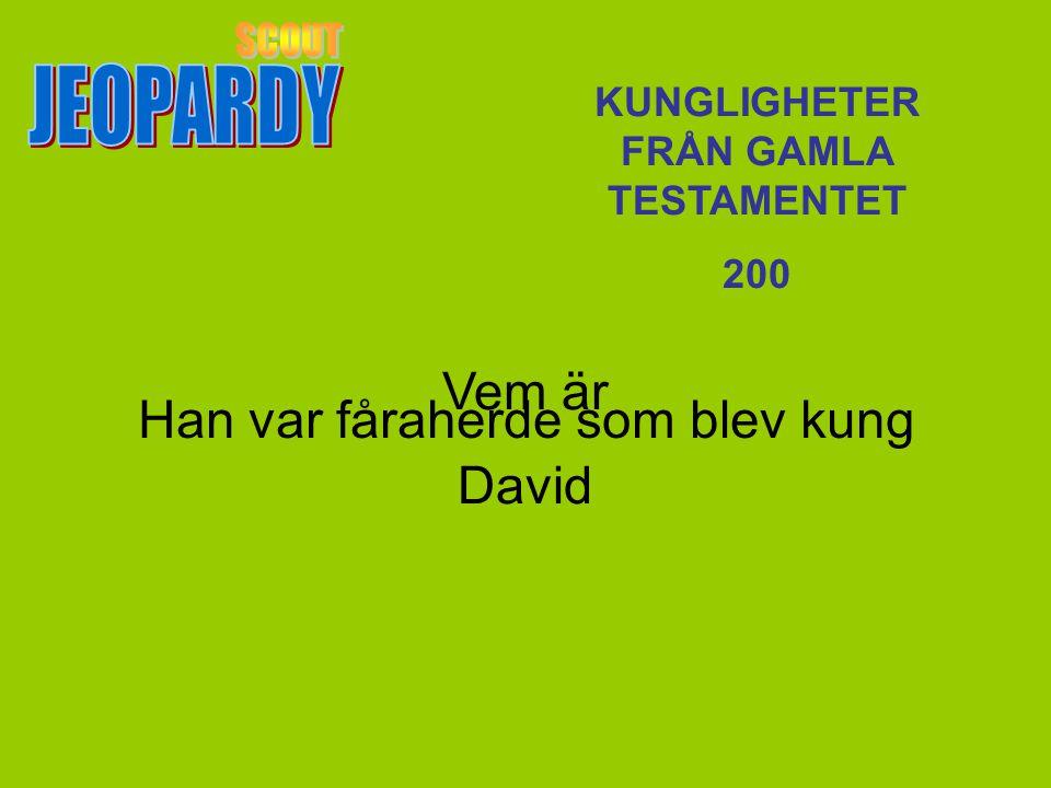 Vem är David KUNGLIGHETER FRÅN GAMLA TESTAMENTET 200 Han var fåraherde som blev kung