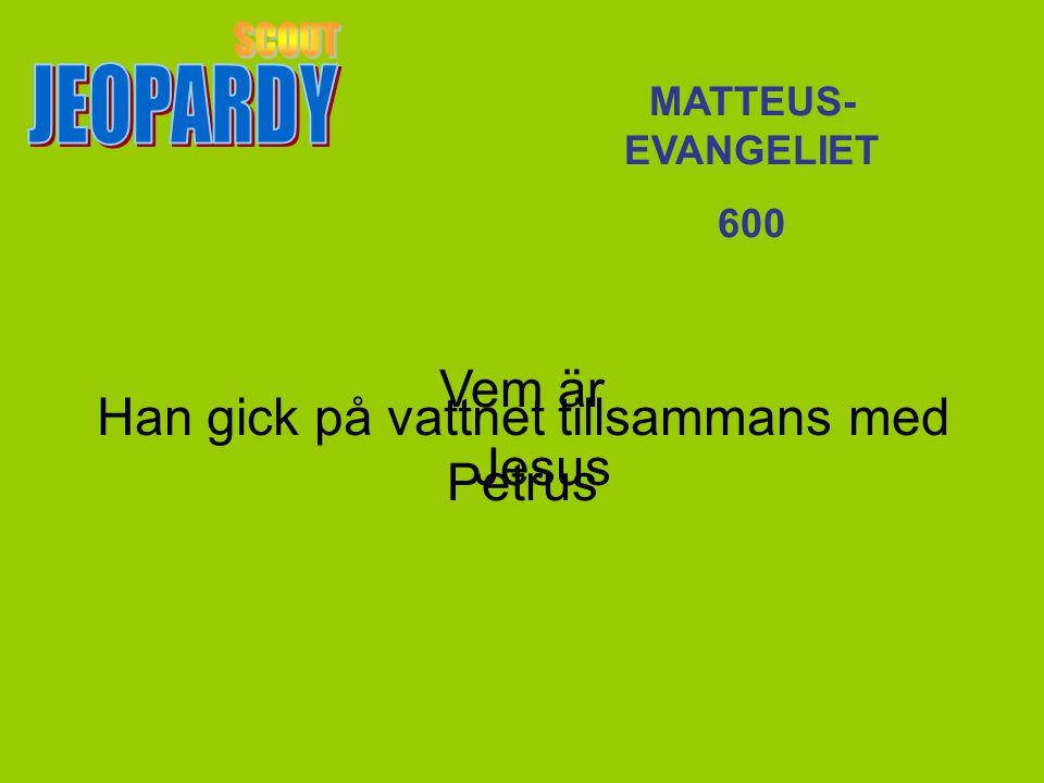 Vem är Petrus MATTEUS- EVANGELIET 600 Han gick på vattnet tillsammans med Jesus