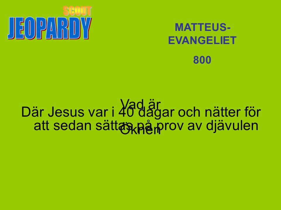 Vad är Öknen MATTEUS- EVANGELIET 800 Där Jesus var i 40 dagar och nätter för att sedan sättas på prov av djävulen