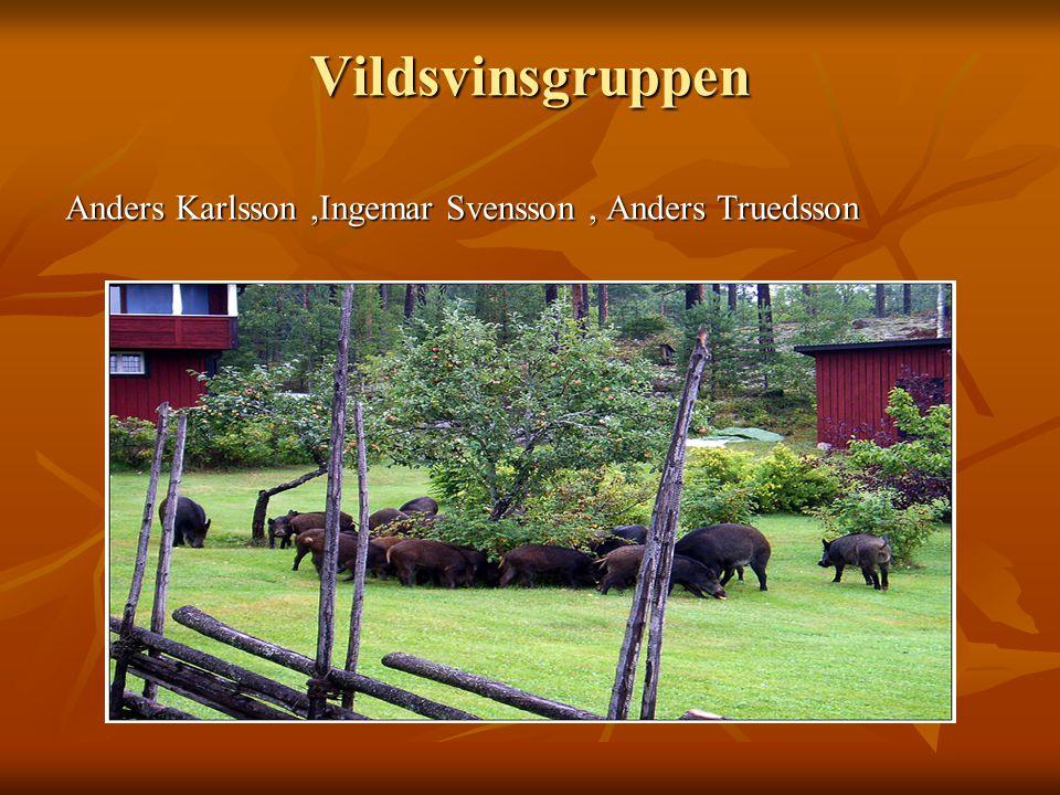 Vildsvinsgruppen Anders Karlsson,Ingemar Svensson, Anders Truedsson