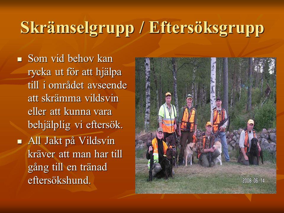 Skrämselgrupp / Eftersöksgrupp  Som vid behov kan rycka ut för att hjälpa till i området avseende att skrämma vildsvin eller att kunna vara behjälpli