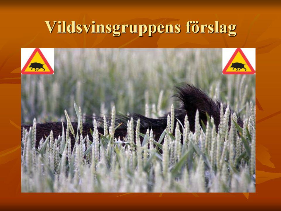 Utfodring av Vildsvin OBS.