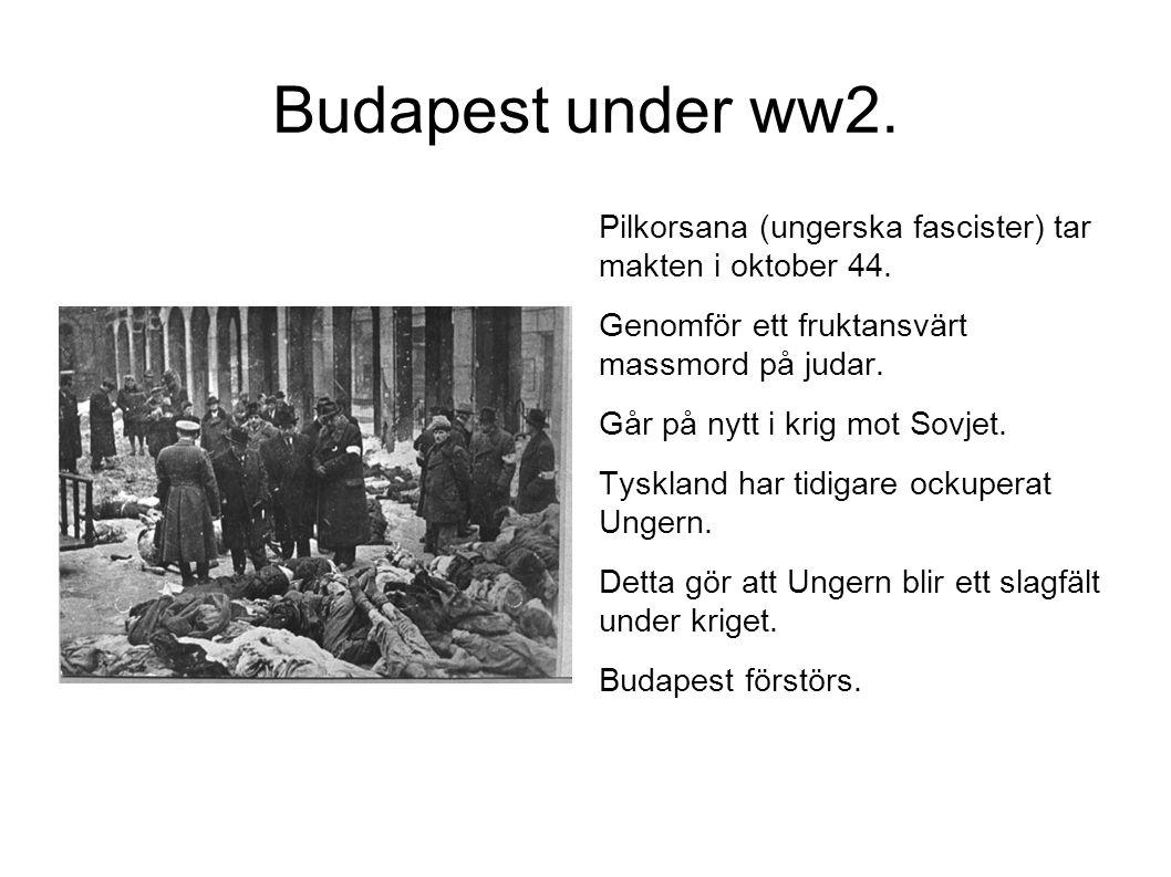 Budapest under ww2. Pilkorsana (ungerska fascister) tar makten i oktober 44. Genomför ett fruktansvärt massmord på judar. Går på nytt i krig mot Sovje