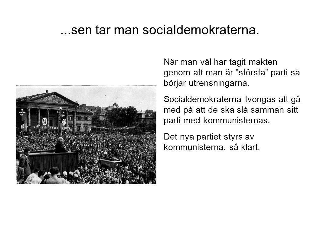 """...sen tar man socialdemokraterna. När man väl har tagit makten genom att man är """"största"""" parti så börjar utrensningarna. Socialdemokraterna tvongas"""