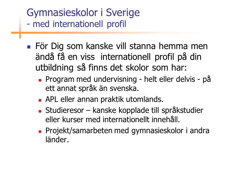 Gymnasieskolor i Sverige - med internationell profil  För Dig som kanske vill stanna hemma men ändå få en viss internationell profil på din utbildnin