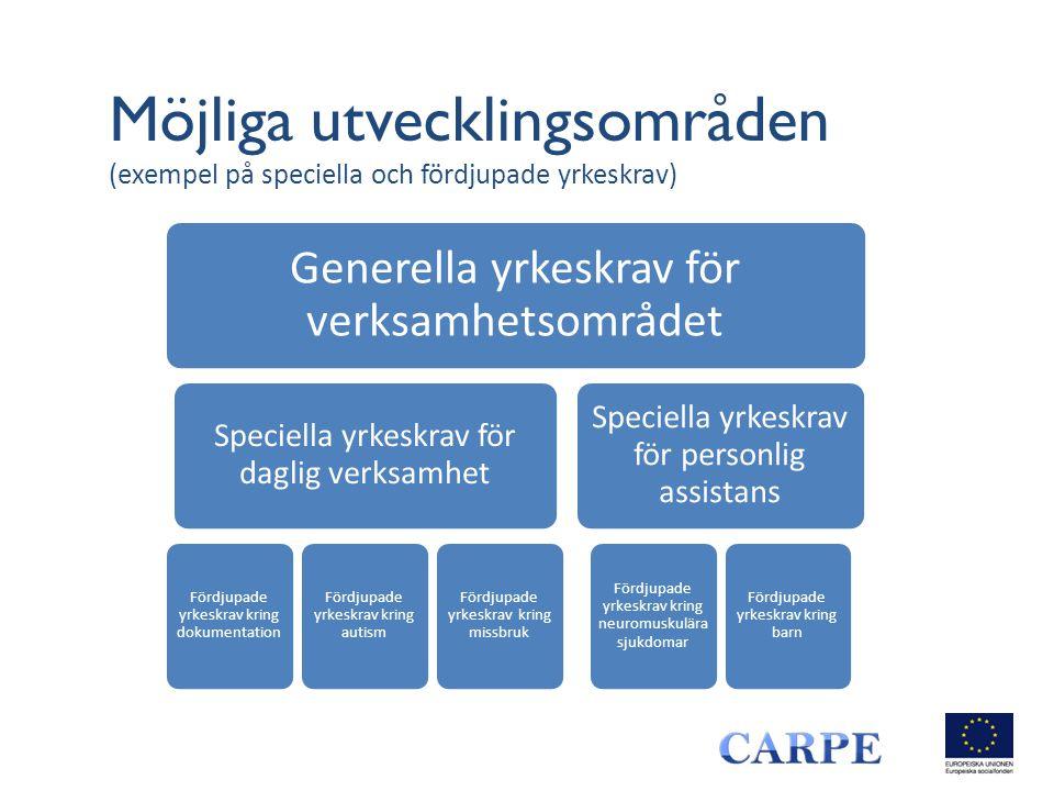 Möjliga utvecklingsområden (exempel på speciella och fördjupade yrkeskrav) Generella yrkeskrav för verksamhetsområdet Speciella yrkeskrav för daglig v