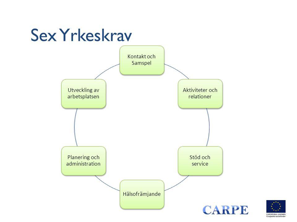 Sex Yrkeskrav Kontakt och Samspel Aktiviteter och relationer Stöd och service Hälsofrämjande Planering och administration Utveckling av arbetsplatsen
