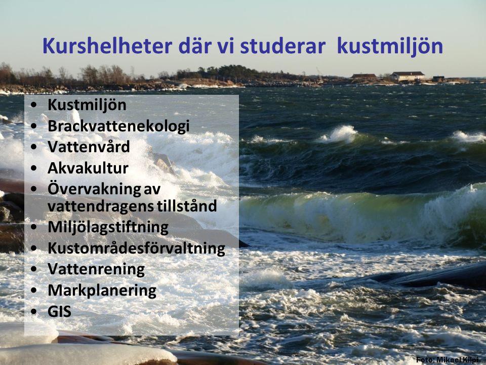 Kurshelheter där vi studerar kustmiljön •Kustmiljön •Brackvattenekologi •Vattenvård •Akvakultur •Övervakning av vattendragens tillstånd •Miljölagstift