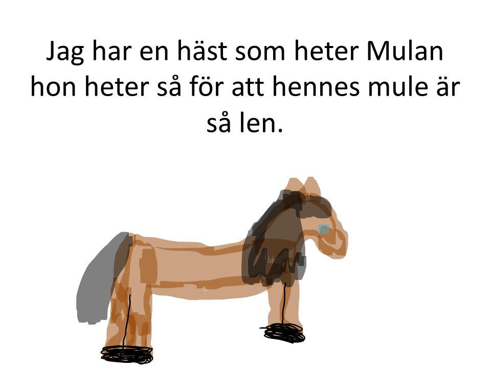 Jag har en häst som heter Mulan hon heter så för att hennes mule är så len.