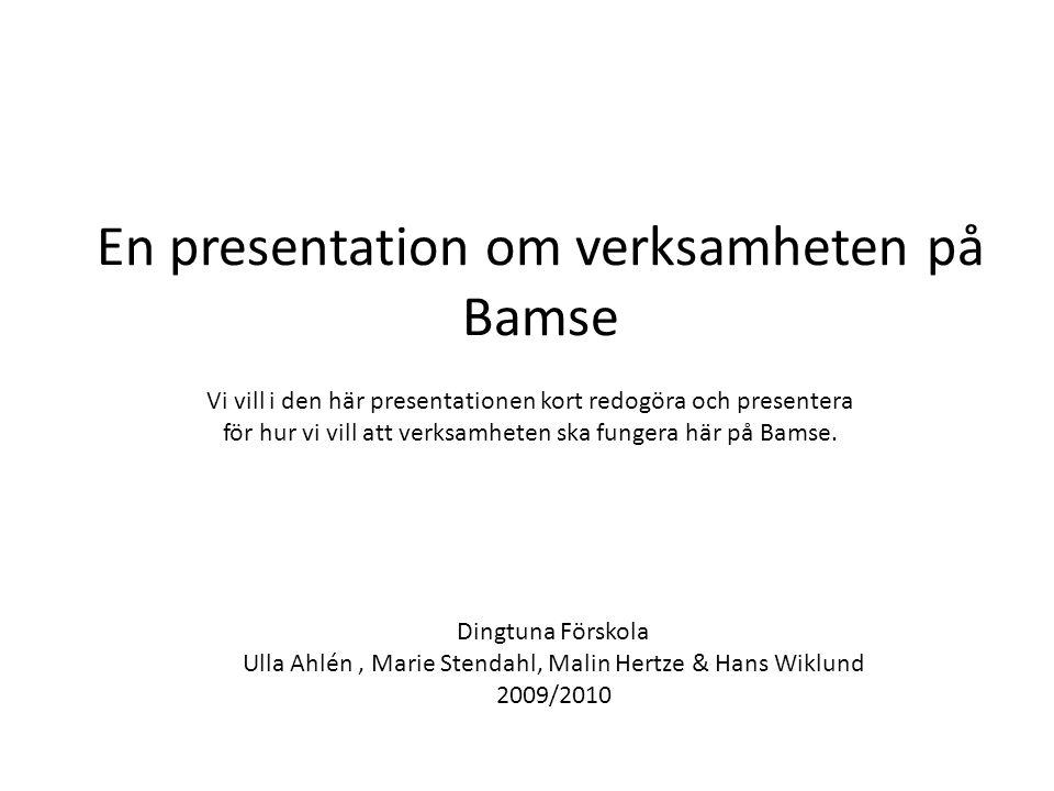 En presentation om verksamheten på Bamse Vi vill i den här presentationen kort redogöra och presentera för hur vi vill att verksamheten ska fungera hä