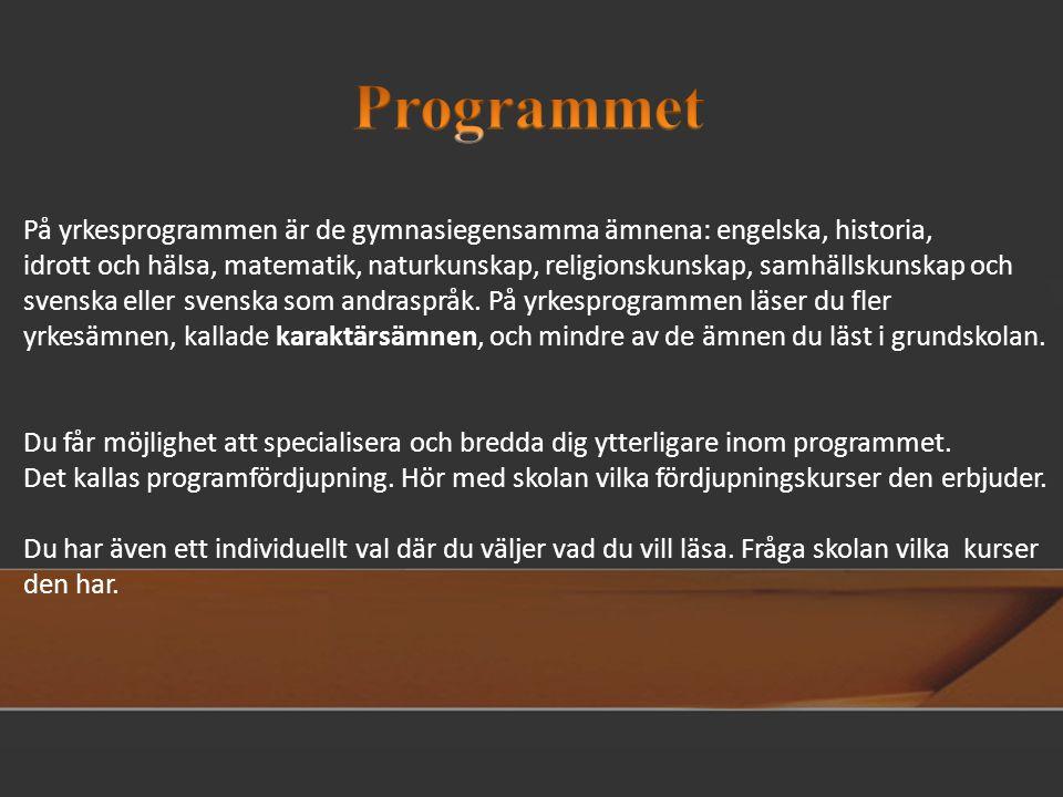 På yrkesprogrammen är de gymnasiegensamma ämnena: engelska, historia, idrott och hälsa, matematik, naturkunskap, religionskunskap, samhällskunskap och svenska eller svenska som andraspråk.