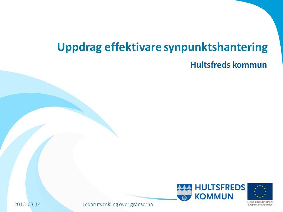 Uppdrag effektivare synpunktshantering Hultsfreds kommun 2013-03-14Ledarutveckling över gränserna