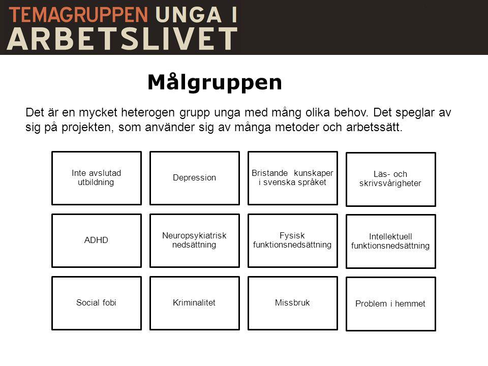 Målgruppen Inte avslutad utbildning Depression Bristande kunskaper i svenska språket Läs- och skrivsvårigheter ADHD Neuropsykiatrisk nedsättning Fysis
