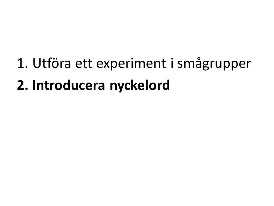 1.Utföra ett experiment i smågrupper 2.Introducera nyckelord