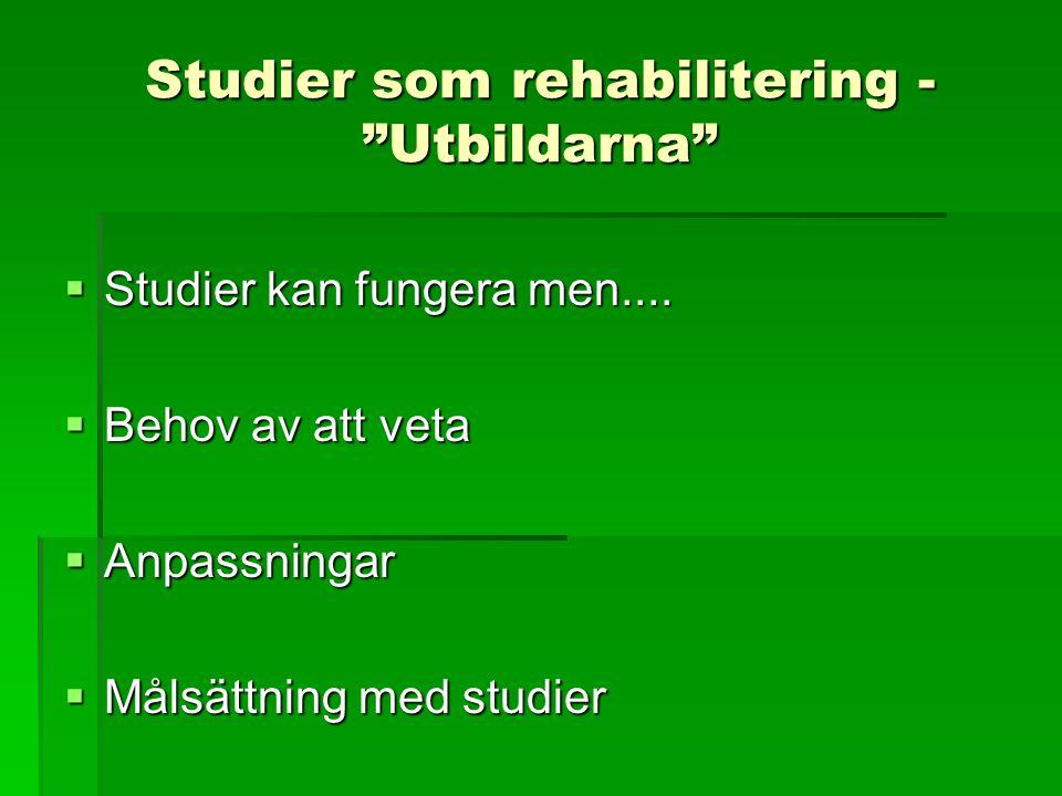 """Studier som rehabilitering - """"Utbildarna""""  Studier kan fungera men....  Behov av att veta  Anpassningar  Målsättning med studier"""