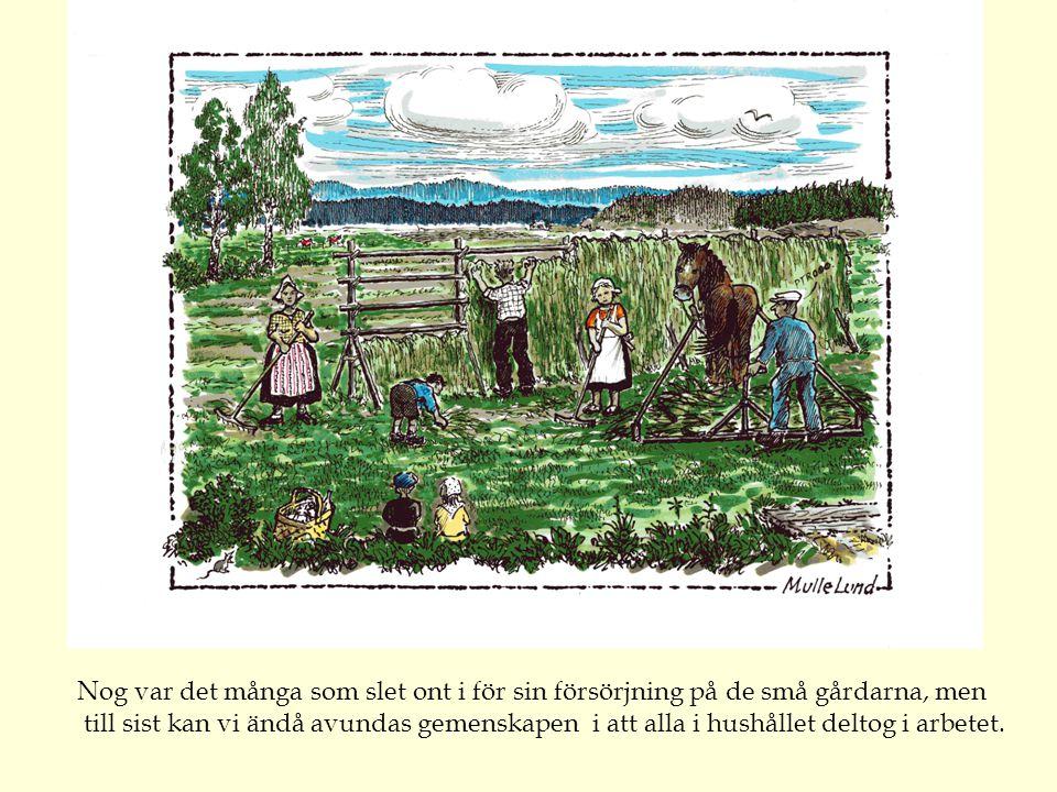 """""""Granbergs Margita"""" Granbergs Margareta Andersdotter från Västannor, var husmor på Brömsollas gård (gård 70 i boken) i mer än sex decennier. Spinnrock"""