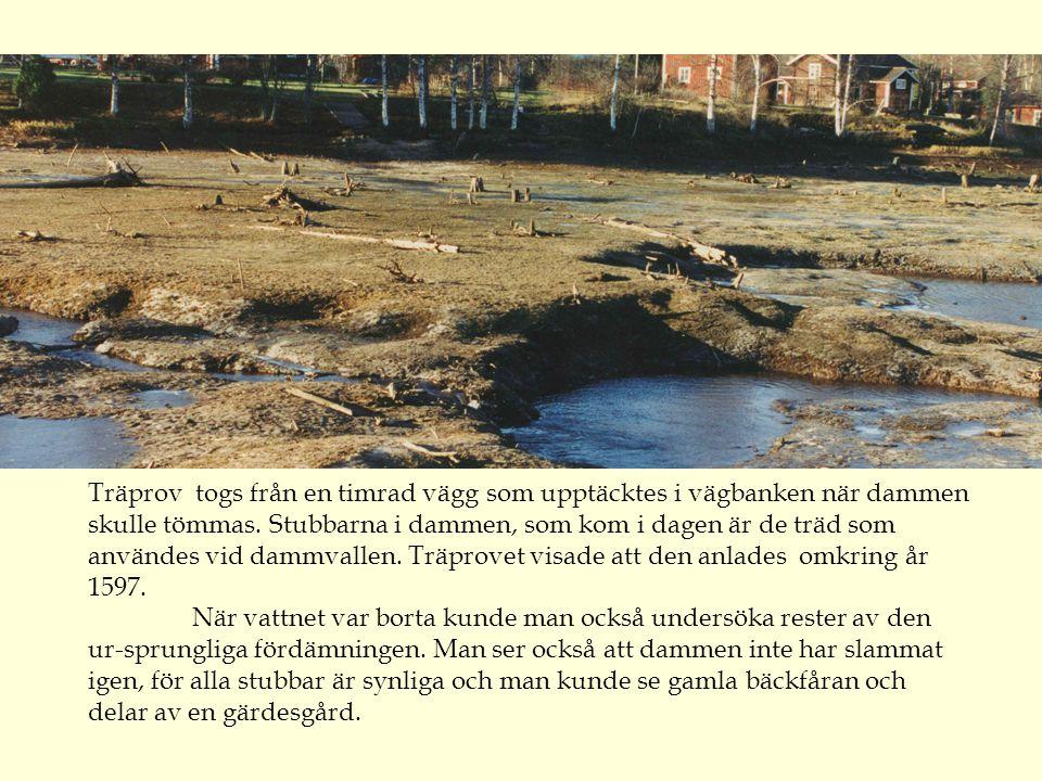 Träprov togs från en timrad vägg som upptäcktes i vägbanken när dammen skulle tömmas.
