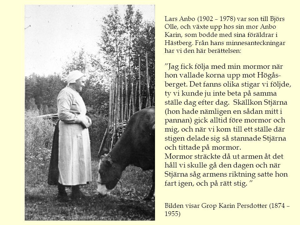 Lars Anbo (1902 – 1978) var son till Björs Olle, och växte upp hos sin mor Anbo Karin, som bodde med sina föräldrar i Hästberg.