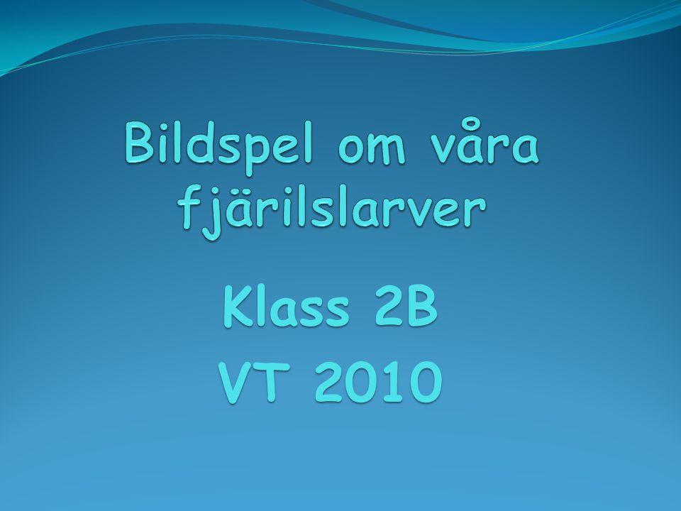 Klass 2B VT 2010