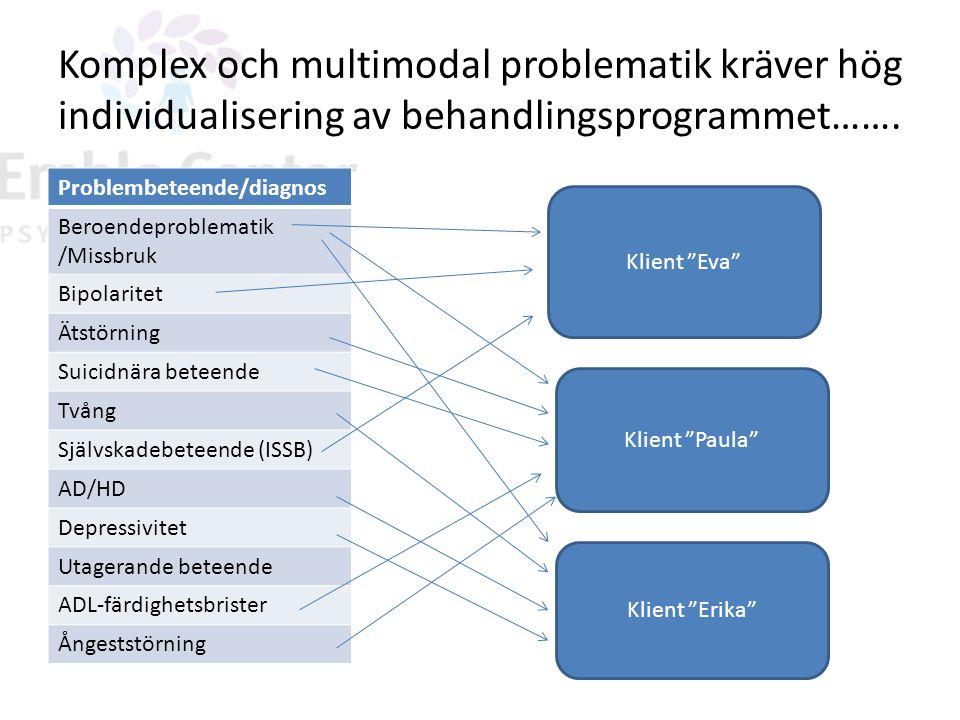 Komplex och multimodal problematik kräver hög individualisering av behandlingsprogrammet……. Problembeteende/diagnos Beroendeproblematik /Missbruk Bipo