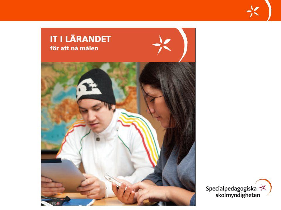 Det är viktigt att se till elevens hela skoldag, att lärmiljön är utformad så att de som behöver, kan använda alternativa verktyg i det vardagliga arbetet.