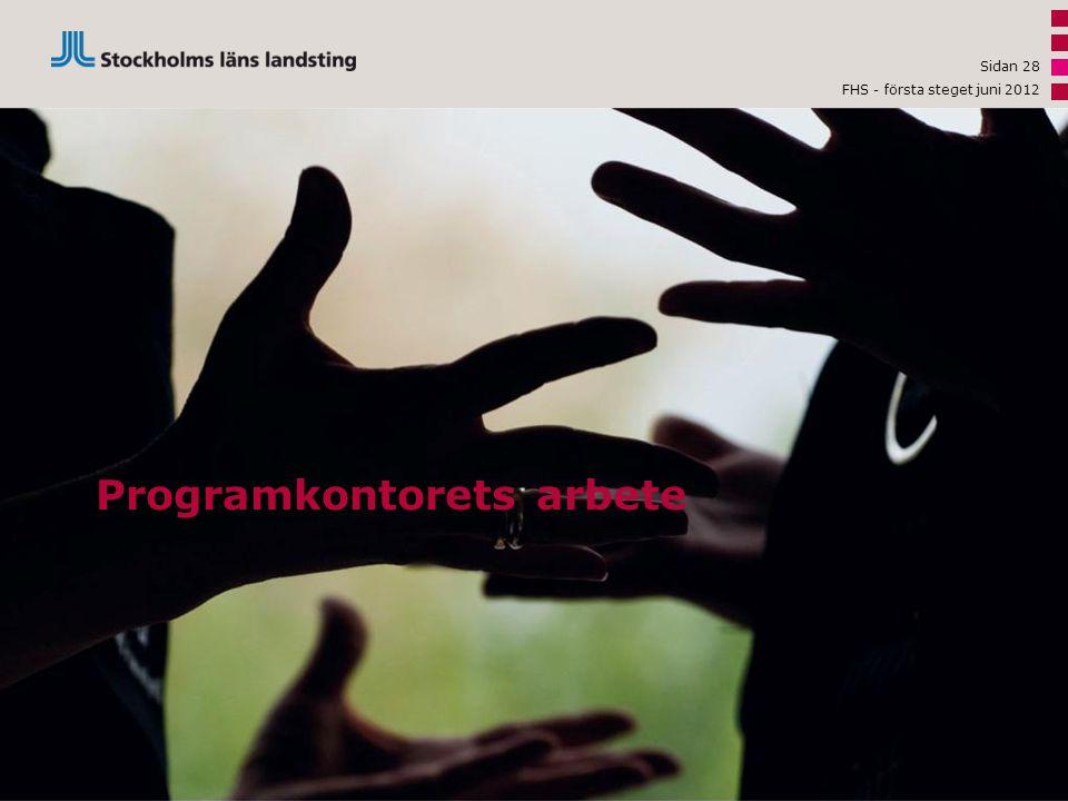 Programkontorets arbete Sidan 28 FHS - första steget juni 2012