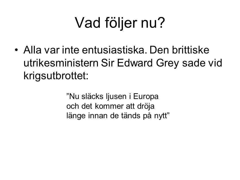 """Vad följer nu? •Alla var inte entusiastiska. Den brittiske utrikesministern Sir Edward Grey sade vid krigsutbrottet: """"Nu släcks ljusen i Europa och de"""