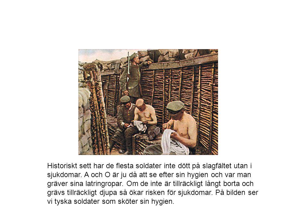 Historiskt sett har de flesta soldater inte dött på slagfältet utan i sjukdomar. A och O är ju då att se efter sin hygien och var man gräver sina latr