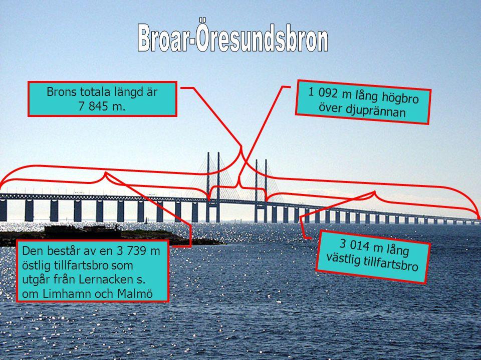 1 092 m lång högbro över djuprännan Brons totala längd är 7 845 m. 3 014 m lång västlig tillfartsbro Den består av en 3 739 m östlig tillfartsbro som