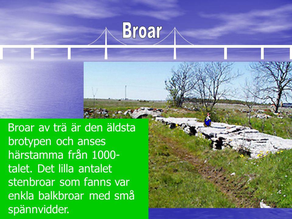 Broar av trä är den äldsta brotypen och anses härstamma från 1000- talet. Det lilla antalet stenbroar som fanns var enkla balkbroar med små spännvidde