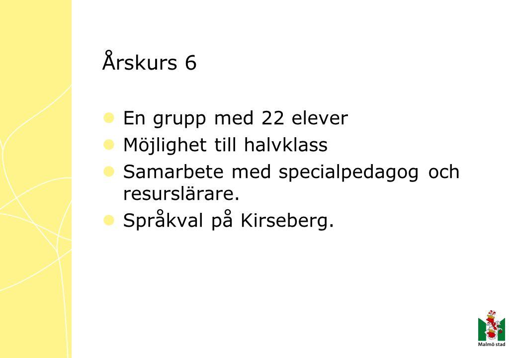 Årskurs 6  En grupp med 22 elever  Möjlighet till halvklass  Samarbete med specialpedagog och resurslärare.  Språkval på Kirseberg.