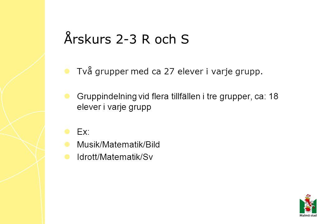 Årskurs 2-3 R och S  Två grupper med ca 27 elever i varje grupp.  Gruppindelning vid flera tillfällen i tre grupper, ca: 18 elever i varje grupp  E