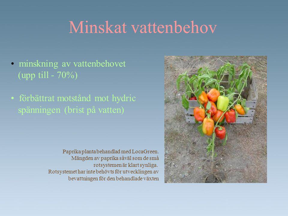 Minskat vattenbehov • minskning av vattenbehovet (upp till - 70%) • förbättrat motstånd mot hydric spänningen (brist på vatten) Paprika planta behandl