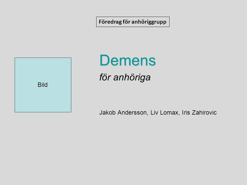 Demens för anhöriga Jakob Andersson, Liv Lomax, Iris Zahirovic Föredrag för anhöriggrupp Bild