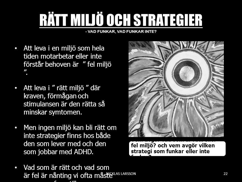 RÄTT MILJÖ OCH STRATEGIER - VAD FUNKAR, VAD FUNKAR INTE.