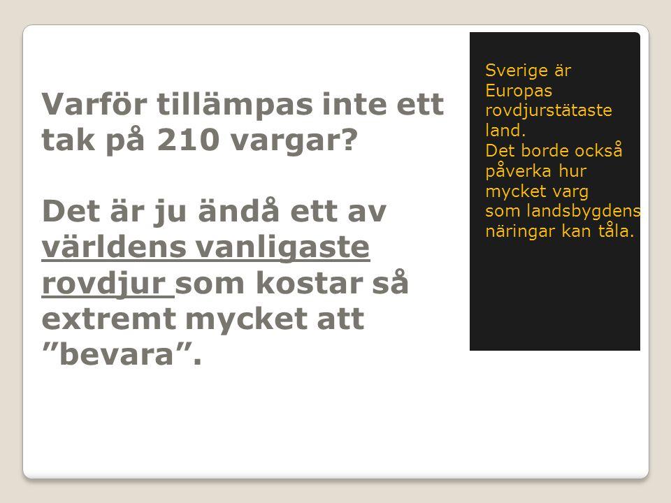 """Varför tillämpas inte ett tak på 210 vargar? Det är ju ändå ett av världens vanligaste rovdjur som kostar så extremt mycket att """"bevara"""". Sverige är E"""