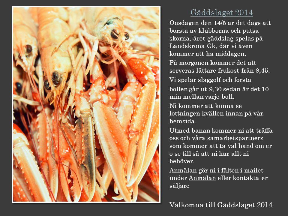 Gäddslaget 2014 Onsdagen den 14/5 är det dags att borsta av klubborna och putsa skorna, året gäddslag spelas på Landskrona Gk, där vi även kommer att ha middagen.