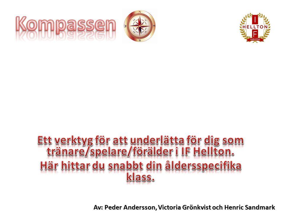 Av: Peder Andersson, Victoria Grönkvist och Henric Sandmark