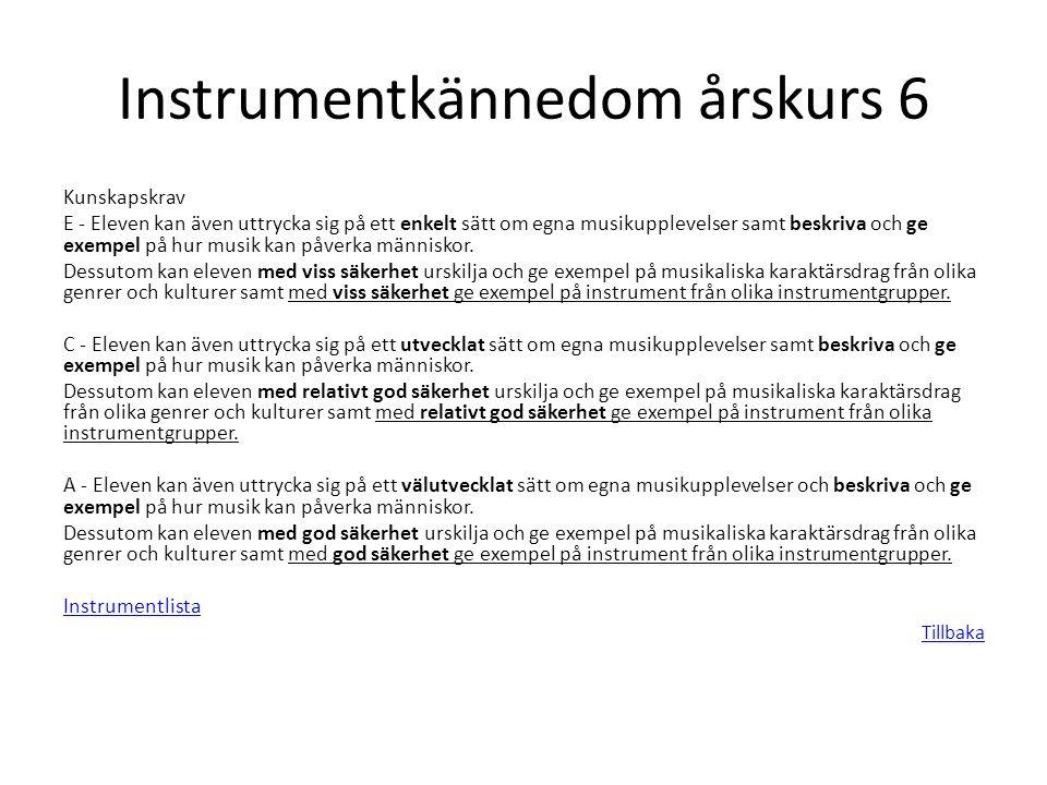 Instrumentkännedom årskurs 6 Kunskapskrav E - Eleven kan även uttrycka sig på ett enkelt sätt om egna musikupplevelser samt beskriva och ge exempel på