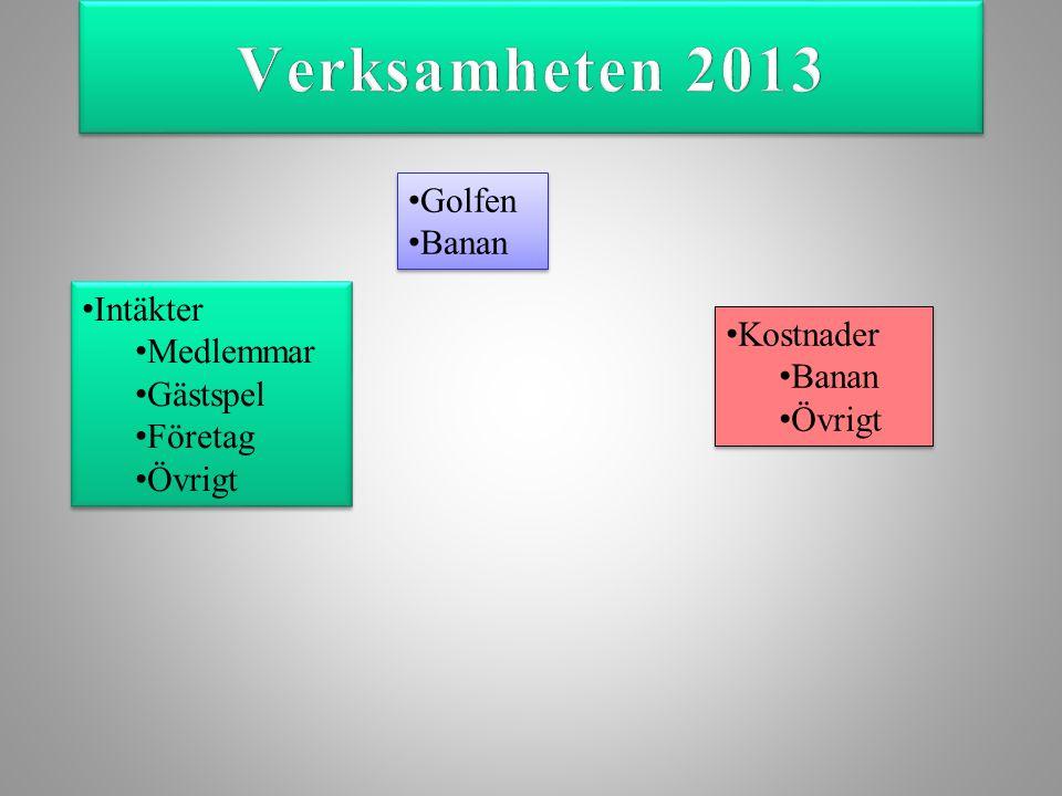 Medlemsutveckling 2013